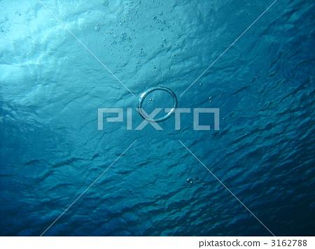 泡泡圈 在海洋里 海底的