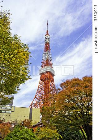 东京塔 东京铁塔 银杏树