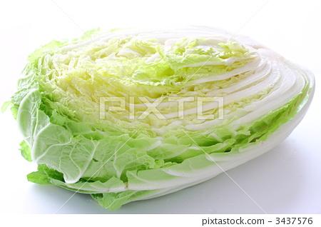 蔬菜_食品 叶_叶菜类 大白菜 照片 大白菜 切开 蔬菜 首页 照片 蔬菜图片