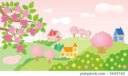 樱花 樱桃树 开花