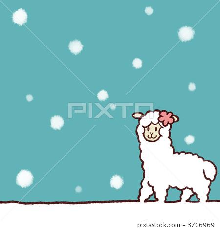 羊驼stock photos - pixta