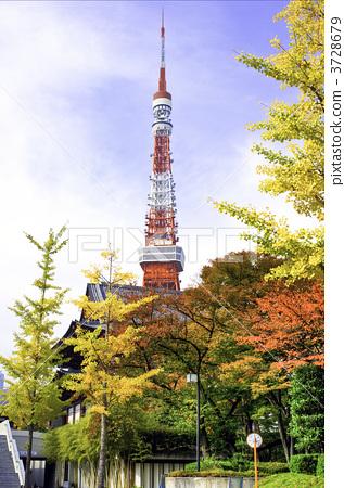 东京铁塔 东京塔 秋天