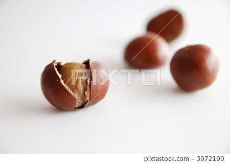 照片 蔬菜_食品 水果 板栗 板栗 煨栗子 烤甜板栗  *pixta限定素材仅