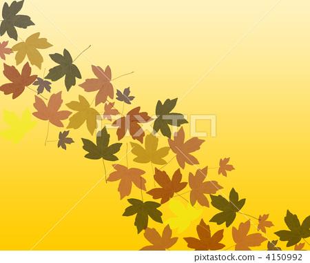 秋天的枫树简笔画