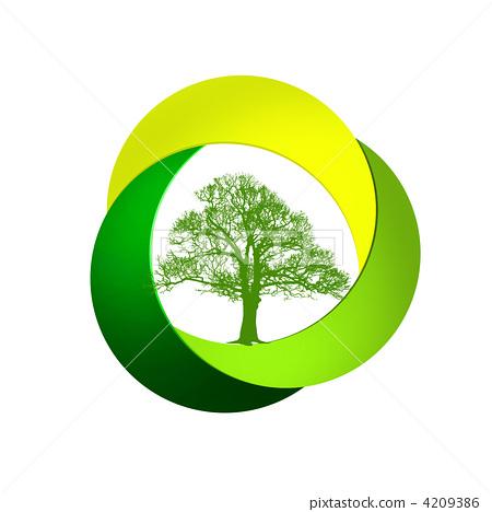 正在成长的树木 白色背景 绿色