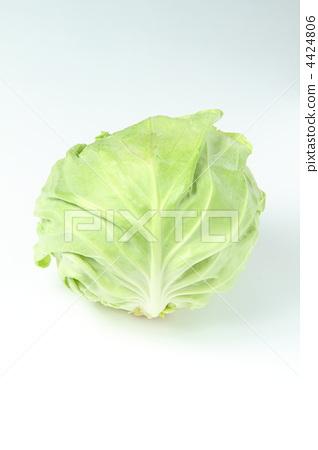 包菜 甘蓝 生吃蔬菜
