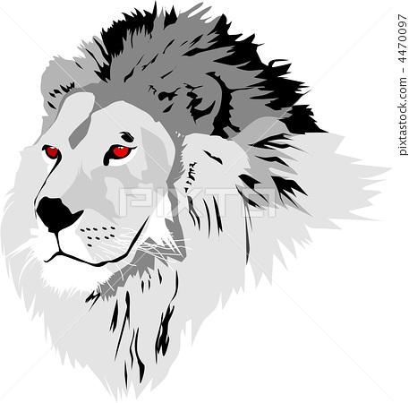 一只动物 母狮 动物宝宝