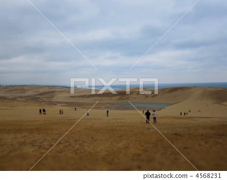 风景_自然 大地 山丘 照片 鸟取沙丘 沙丘 山丘 首页 照片 风景_自然