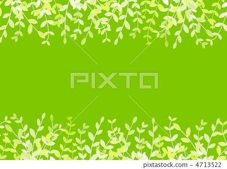 灌木丛 树叶