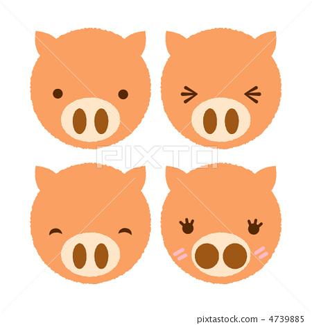 动物宝宝 一只动物 猪