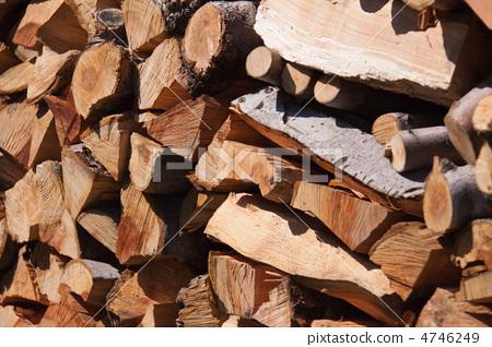 木材 红豆杉梅松 柴火