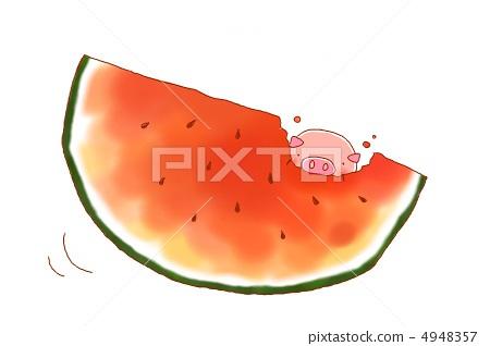 插图素材: 猪 西瓜 水果
