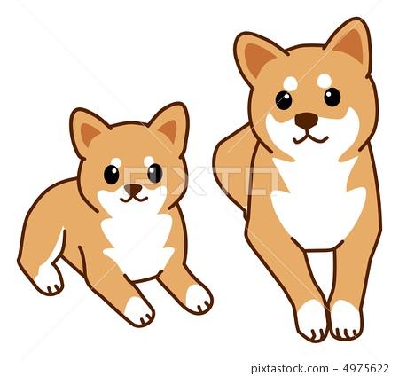 柴犬壁纸高清可爱卡通