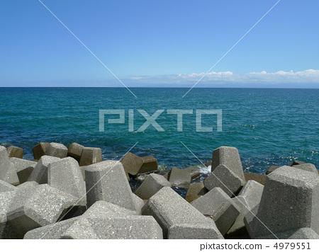 图库照片: 消浪堤 四足动物 海岸