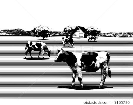 图库插图: 牧场 草原 奶牛