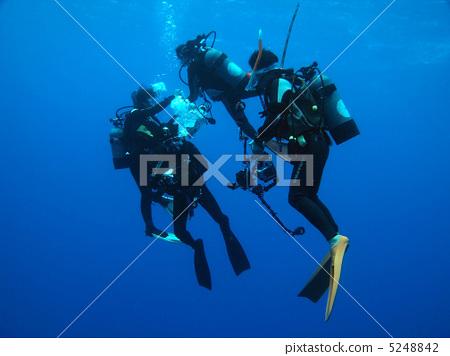 潜水员 蓝色珊瑚 蓝色