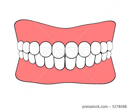 插图 日用品 医疗_医疗用品 假牙 假牙 剪贴画 释义  *pixta限定素材