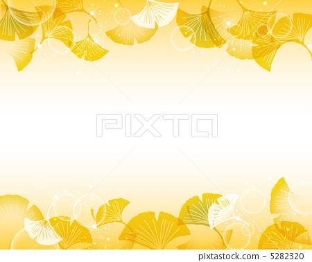 图库插图: 银杏 矢量图 银杏树