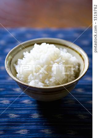 白米子是什么动物