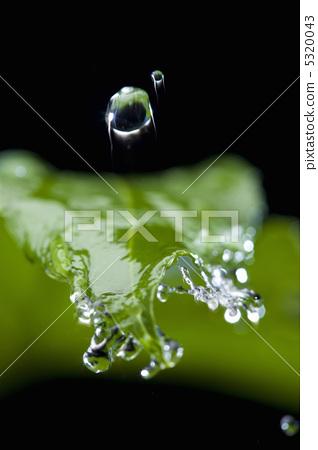 照片素材(图片): 水 绿色 提神