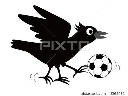 英式足球 小鸟-插图图库