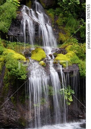 照片素材(图片): 龙的瀑布夏天4