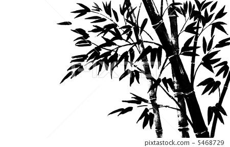 竹子 毛笔绘画 黑白
