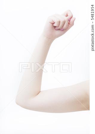 臂 臂 手臂 女人  图库照片#5481954 授权信息此素材有模特摄影使用