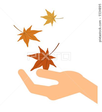 秋天颜色 枫树 枫叶