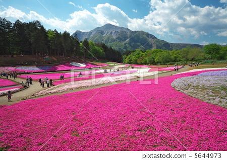 汤原县鹰山风景区