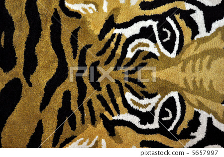 照片素材(图片): 有条纹的 老虎图案 动物痕迹