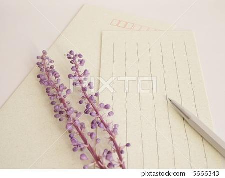 照片 文字_记号 文字 字母 信纸 书写纸 信件  *pixta限定素材仅在