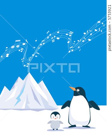 南极动物矢量图