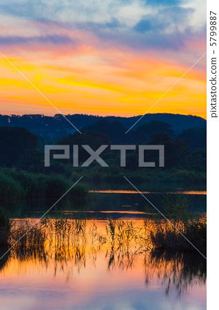 黎明 首页 照片 姿势_表情_动作 行为_动作 看 黎明  *pixta限定素材