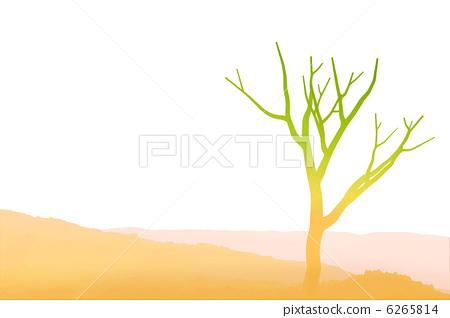 树木发芽图片大全
