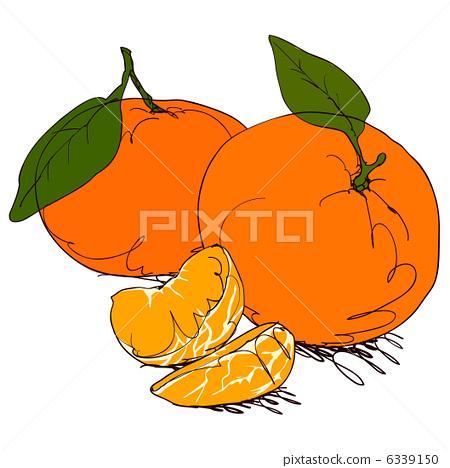 桔子 橘子 水果