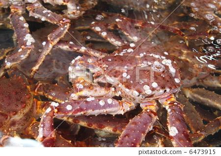 图库照片: 帝王蟹 海鲜 水果海洋