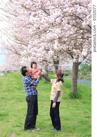 樱桃树 父母和小孩 人物