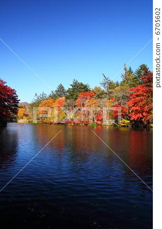 壁纸 风景 山水 摄影 桌面 318_450 竖版 竖屏 手机