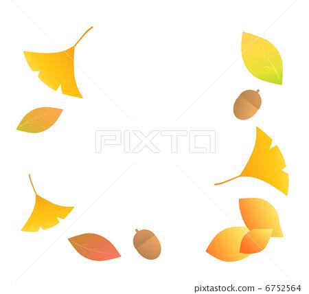 树叶 银杏叶 橡果