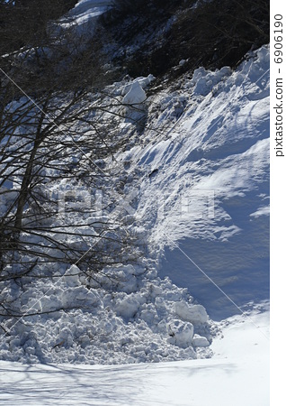 照片素材(图片): 雪崩 冷冻 树木