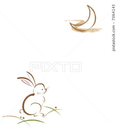 兔子 野兔 中秋节之夜