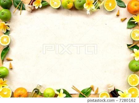 橘子竖剖面图手绘