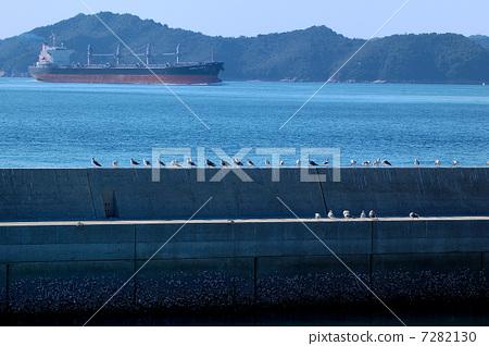 男木岛风景 7282130