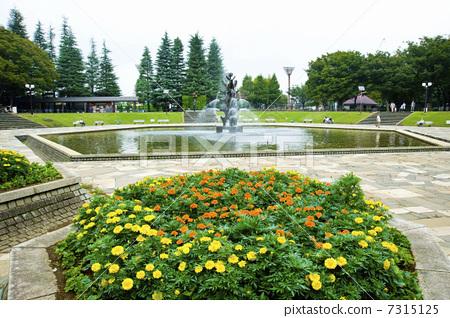 喷泉 方形 公园