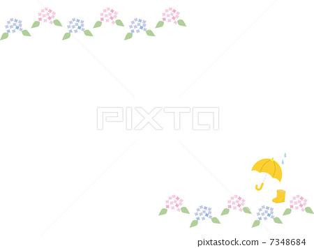 雨季 绣球花