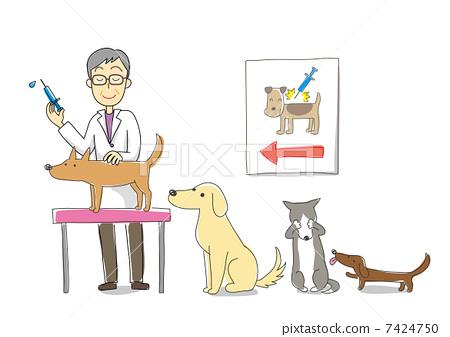 图库插图: 疫苗 兽医 矢量