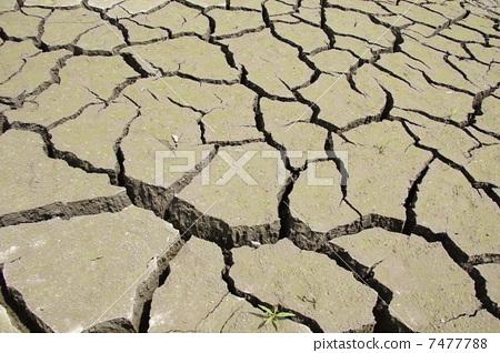 照片素材(图片): 裂缝 地面裂缝 裂沟