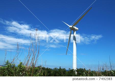 照片: 风车 风力涡轮机 发电机图片