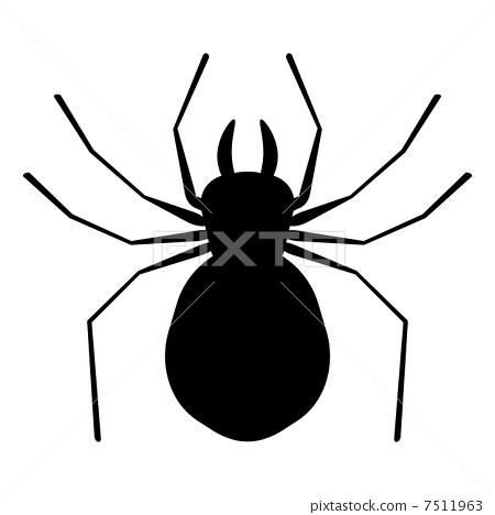 云彩 蜘蛛 一只小动物